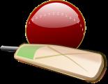 cricket-150561_640